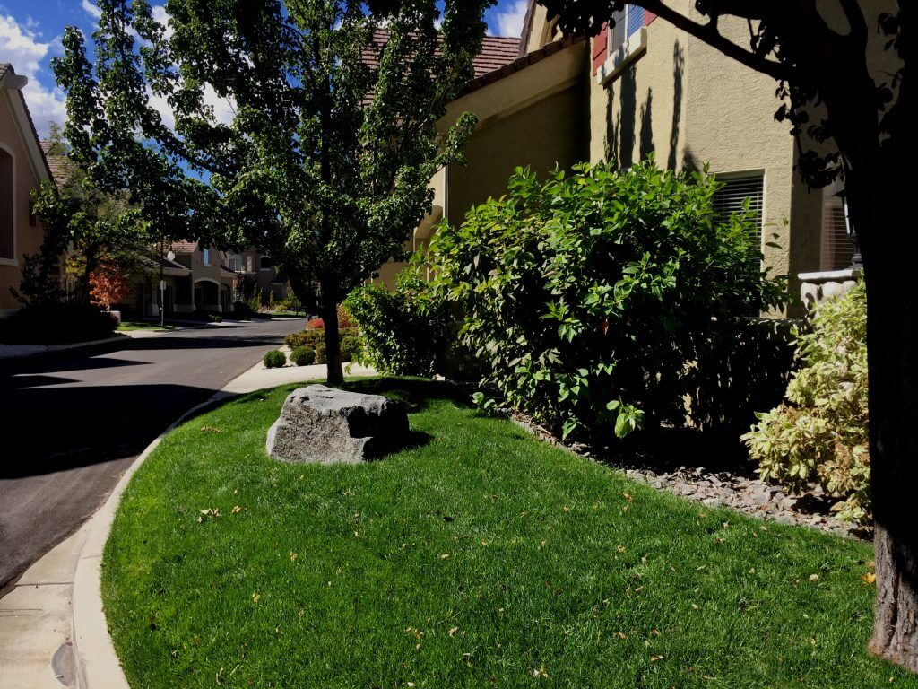 hoa-landscape-and-property-maintanence-reno-nv