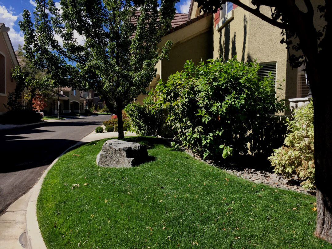 Property Maintenance For Homeowner S Associations Reno Nv