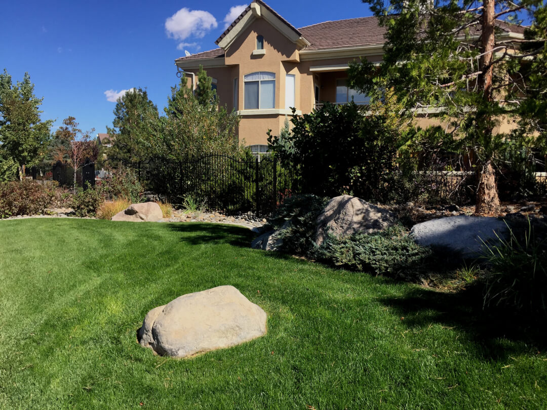 hoa-landscape-maintenance-reno-nevada-picture