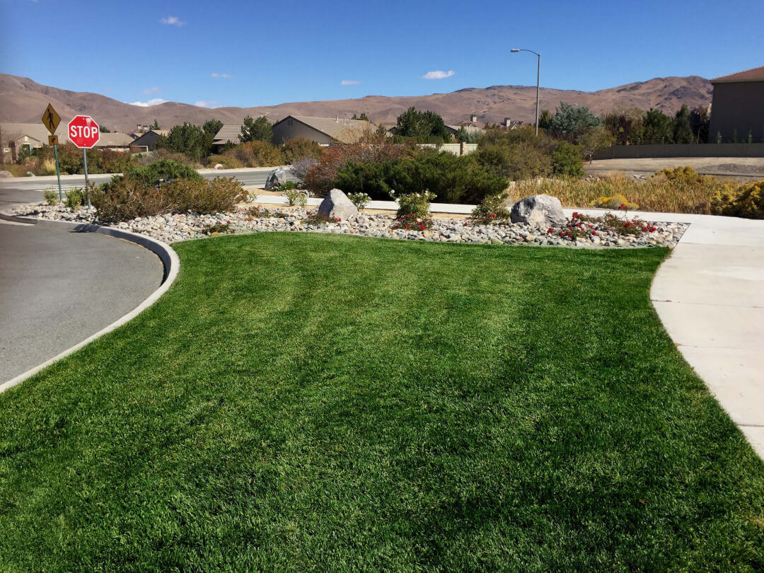 commercial property landscaping-maintenance-reno-nv-picture