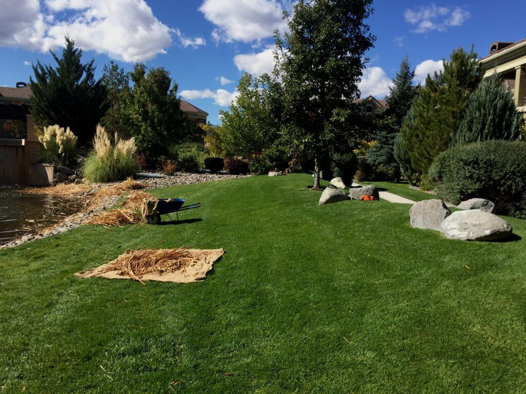 hoa-property-maintenance-landscape-maintenance-reno-nv-picture