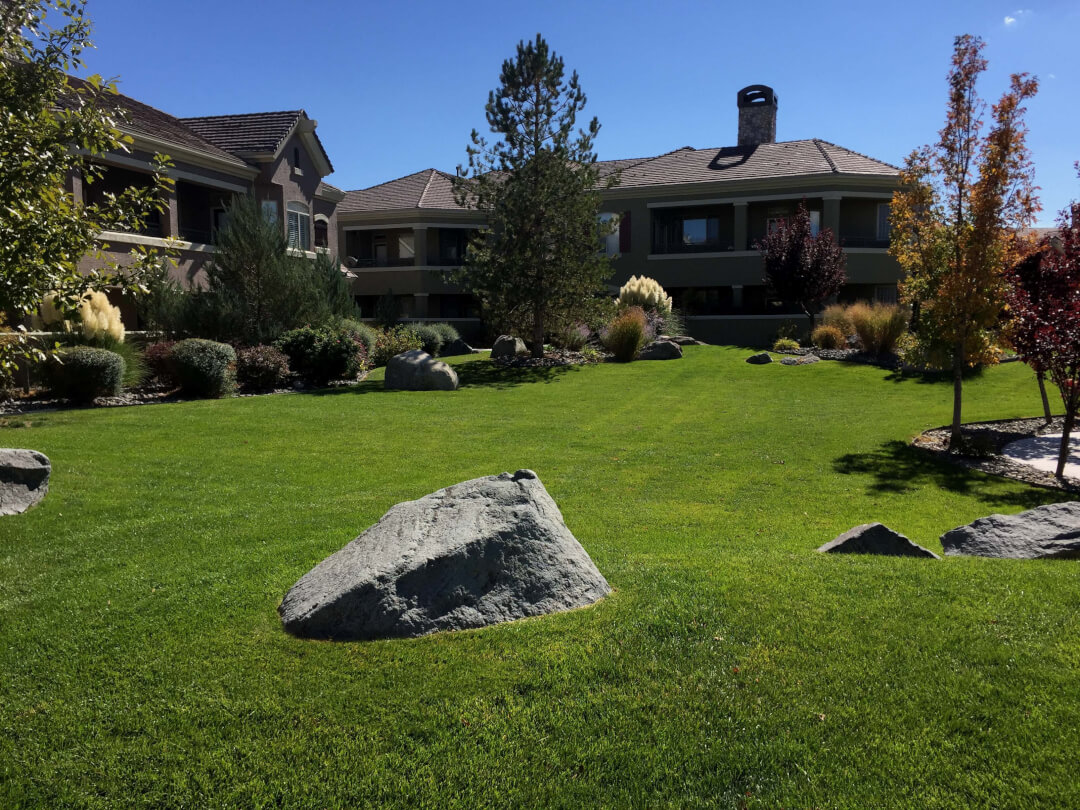 Landscape boulders reno nv white granite decorative rock for Outerscapes landscaping